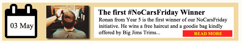 Nocars 1 winner