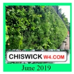 chiswick latest june